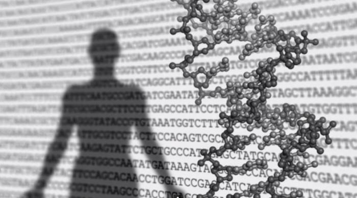 Abertura de video de divulgação de pesquisa japonesa sobre celulas-tronco, produzido antes de ser comprovada fraude no estudo. Imagem: Reprodução